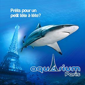 L'anniversaire de mes enfants au Cinéaqua, l'aquarium du Trocadéro à Paris dans le 16ème.
