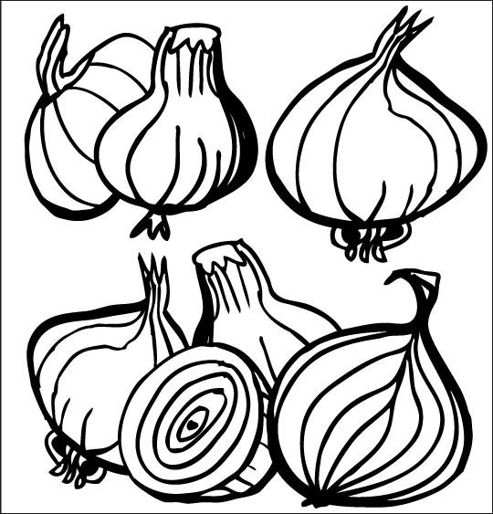 Pour Halloween, le dessin animé La soupe à la Sorcière coloriage la soupe a la sorciere legumes oignon