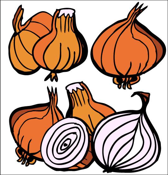 Pour Halloween, le dessin animé La soupe à la Sorcière la soupe a la sorciere legumes oignon