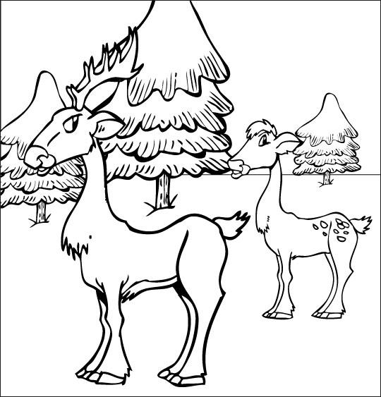 Chanson de Noël gratuite, le coloriage de Mon beau Sapin avec les cerfs