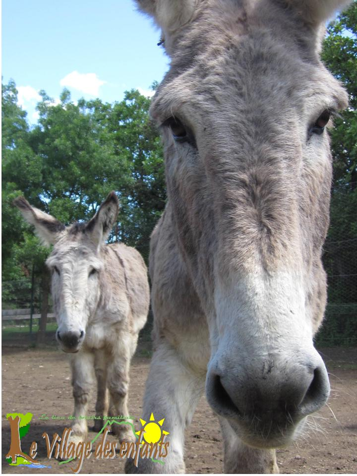 Le parc d'animation le village des enfants, Crunchy l'âne.