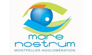 Passer noël à l'aquarium de Montpellier, c'est possible !