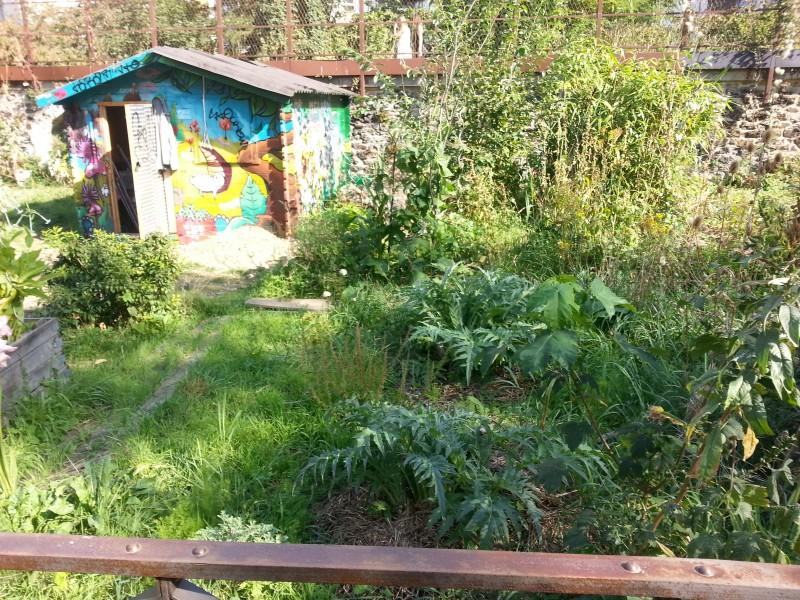 Sortie gratuite à Paris avec les enfants, la coulée verte, le jardin potager caché au fond de la prairie sauvage.