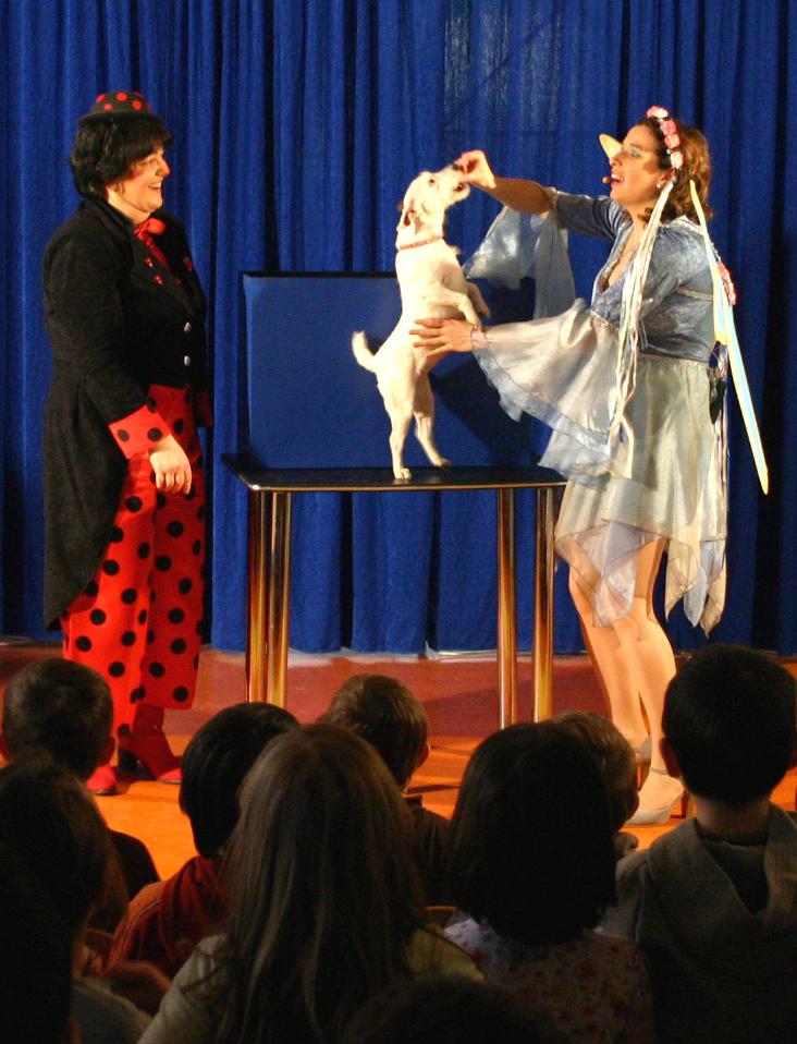 Apparition Missa, spectacle jeune public La Fée Liloo et la Coccinelle.