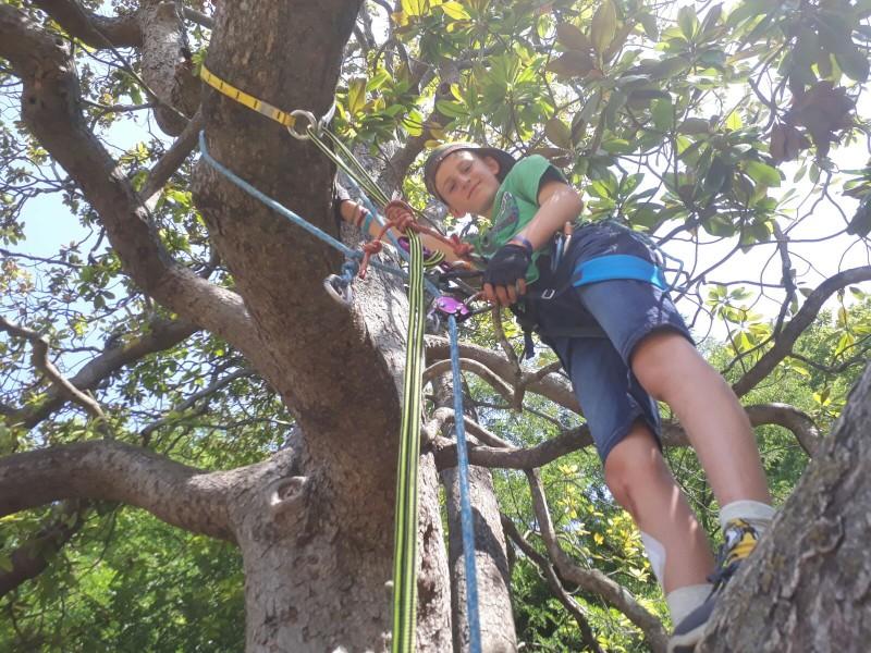 Anniversaire dans les arbres à Montpellier accrobranche