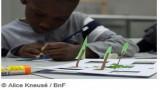 Eté 2016 à la BnF : Ateliers et visites jeunes public