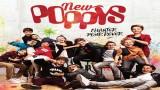 Les New Poppys sortent leur premier album le 25 novembre !