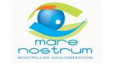 Passer Noël à l'aquarium de Montpellier? c'est possible !