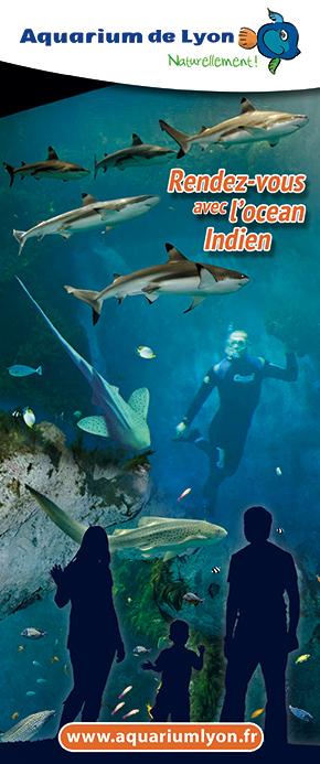 Aquarium de Lyon pour les enfants. Un montage photo de stephyprod.
