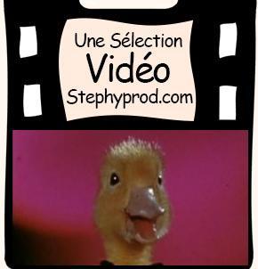 Vidéos Canard. Sélection Stephyprod pour les enfants et la famille.