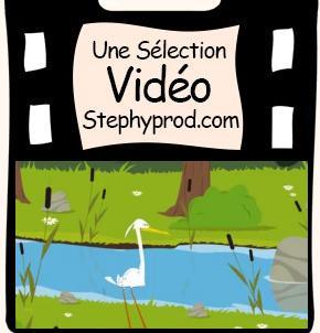 Vidéo Fable de La Fontaine Le Héron  pour les enfants et les bébés.