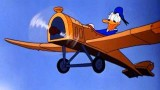 Dessin animé Disney Donald Duck - La Machine Volante Donald